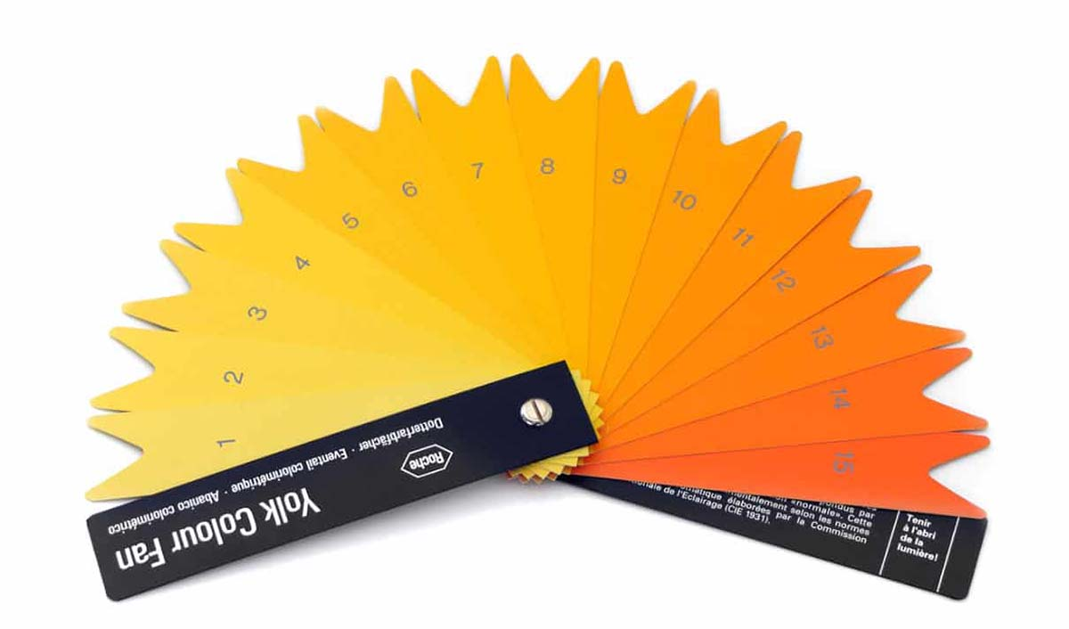 Egg yolk color fan used to dial in feed additives to manipulate color.